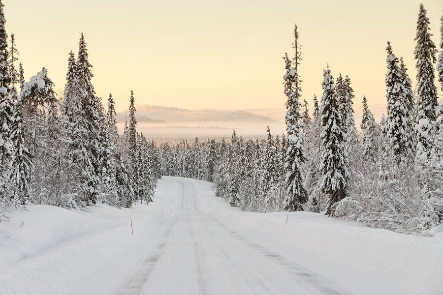Winter landschap Finland van Menno Schaefer
