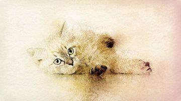 Kätzchen  van Minelle Chevalier