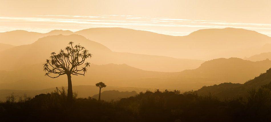 Afrikaanse zonsondergang panorama