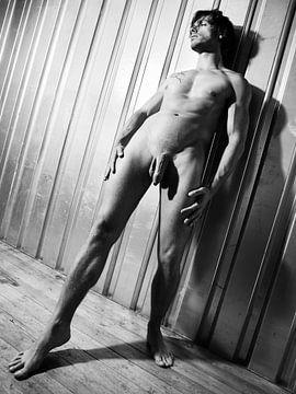 Mooie naakte man met prachtig lichaam #A9199 van william langeveld