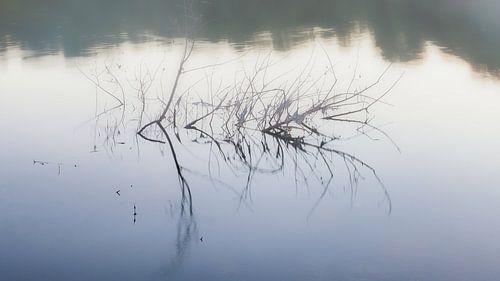 Loire van Evert Jan Luchies