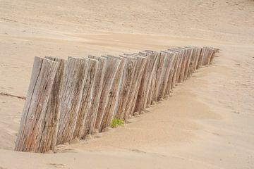 Palen / golfbreker op strand Ameland van