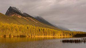 Zonsondergang Canadese Rockies