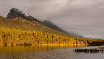 Zonsondergang Canadese Rockies van Ellen van Drunen