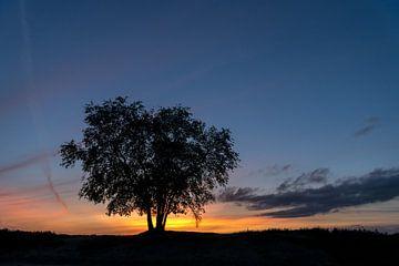 Sonnenuntergang auf der Heide von Ermelo von Gerry van Roosmalen