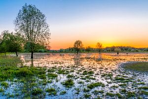 Zonsondergang in Stadspark Meinerswijk Arnhem van