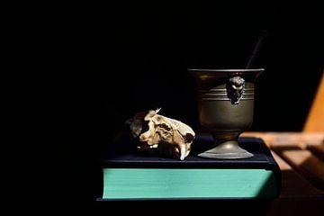 Alchemie van Ulrike Leone