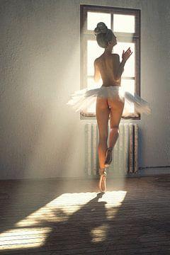 Ballerina Blond van Arjen Roos