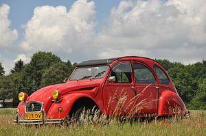 Citroën 2cv in het gras