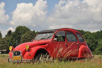 Citroën 2cv in het gras van Theo Joosten