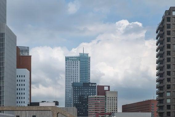 Bossen van hoogbouw in Rotterdam van Arjen Roos
