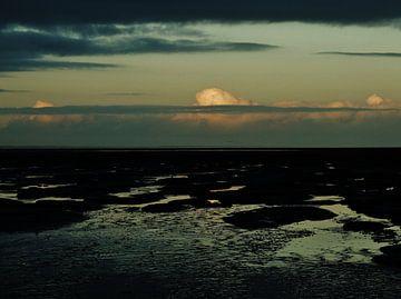 Late avondlucht van Brenda van der Zee