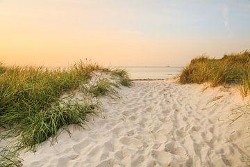 Gouden uur aan het strand van de Oostzee van Ursula Reins