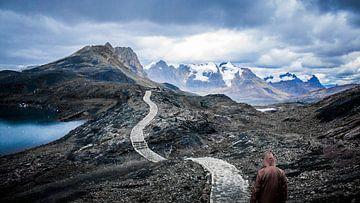 Nur in den Bergen von Alex Bosveld