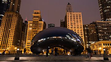 Chicago Cloud Gate van Bjorn van der Wee