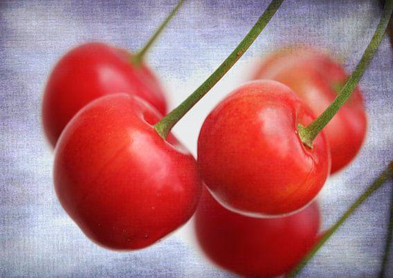 Rote Kirschen 2 van Rosi Lorz
