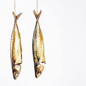 Hangende makrelen tegen een witte achtergrond van MICHEL WETTSTEIN