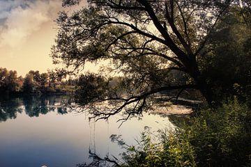 Donau von Franz Nagler