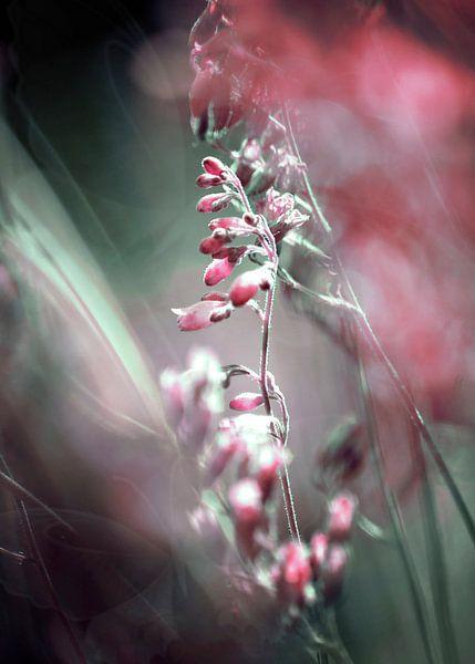RED SPANGLES no5-Butterflies van Pia Schneider