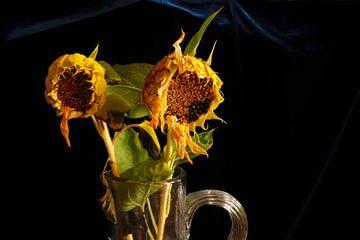 Schilderachtige zonnebloemen van Thomas Jäger
