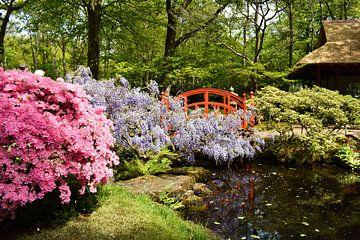 Japanse tuin von Chayenne Batenburg-Boom
