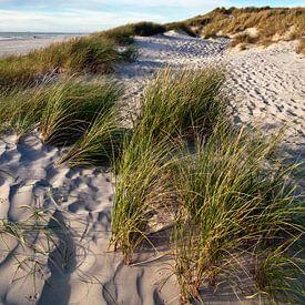 Danish Dune Landscape van Silva Wischeropp