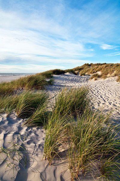 Danish Dune Landscape sur Silva Wischeropp