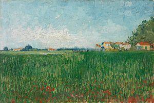 Vincent van Gogh, Veld met klaprozen van