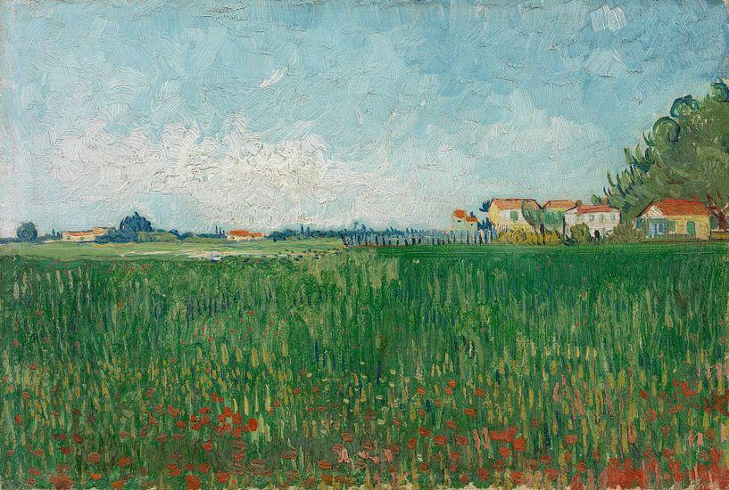 Vincent van Gogh, Veld met klaprozen van 1000 Schilderijen