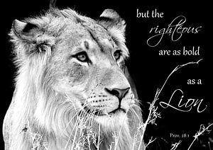 Spreuken 28:1 de rechtvaardige is moedig als een leeuw