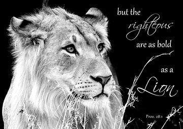 Spreuken 28:1 de rechtvaardige is moedig als een leeuw van Heleen van de Ven