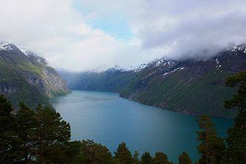 De immense grootte van een fjord von Stephan Neven