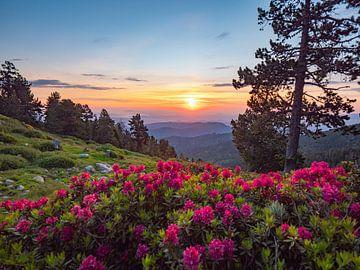 Sonnenaufgang in den Pyrenäen von Martijn Joosse