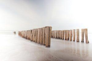Palenreeks strand Burgh-Haamstede van Rick den Biggelaar
