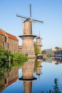 Molen De Palmboom en De Noord in Schiedam van Kok and Kok