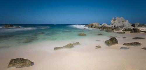 Dushi Playa van Ed van Loon