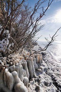 Frozen Beach van Jörg Hausmann