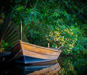 Boot langs de waterkant van Matthijs Noordeloos