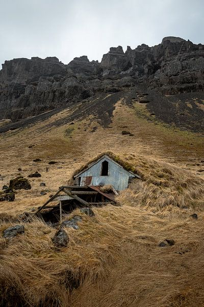 House covered in grass van Remco van Adrichem