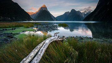 Milford Sound - Südinsel, Neuseeland von Martijn Smeets