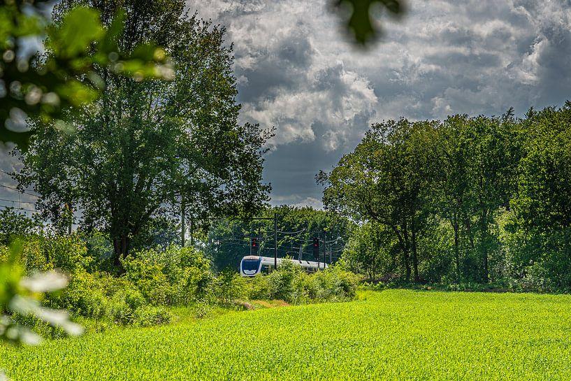 Bilthoven het Maisveld van Hans Lebbe