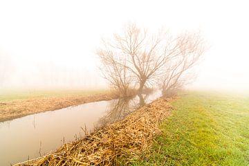 Mistige morgen met een rivier van Marcel Derweduwen