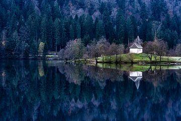 Reflexion der Kirche von Sam Mannaerts Natuurfotografie