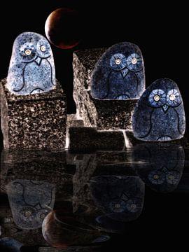 Nachtbrakers van Christine Nöhmeier
