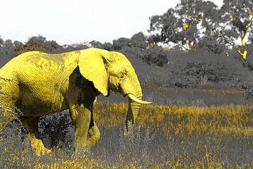 Der gelbe afrikanische Elefant Wildtier Natur Kunst von Bobsphotography