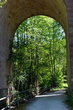 Onder de brug van Claudia Evans