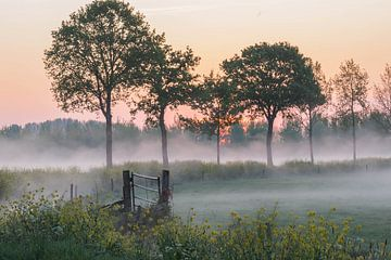 atmosphärische Landschaft von Tania Perneel