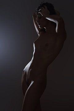 Bodyscape van Allard Kamermans