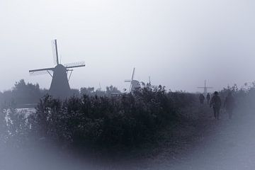 Molens in de mist van Peter Dane