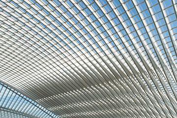 Futuristisch dak van station Luik-Guillemins van Wim Stolwerk